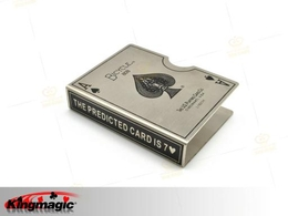 Steel Bicycle Card Protector (Silver)
