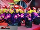 Flower Pots From Cape illusion flower magic