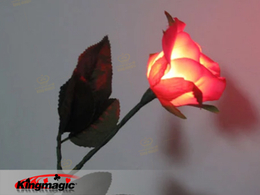 Lighting Rose