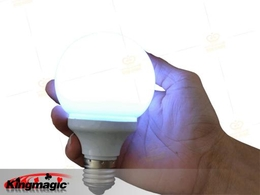 Magic Bulb (Magnetic Control)
